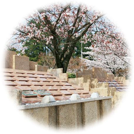 自然葬 SAKURA -さくら-